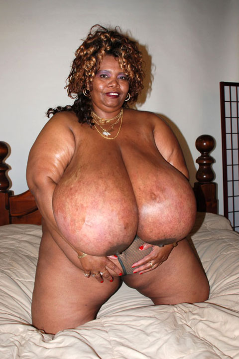 NORMA STITZ FROM